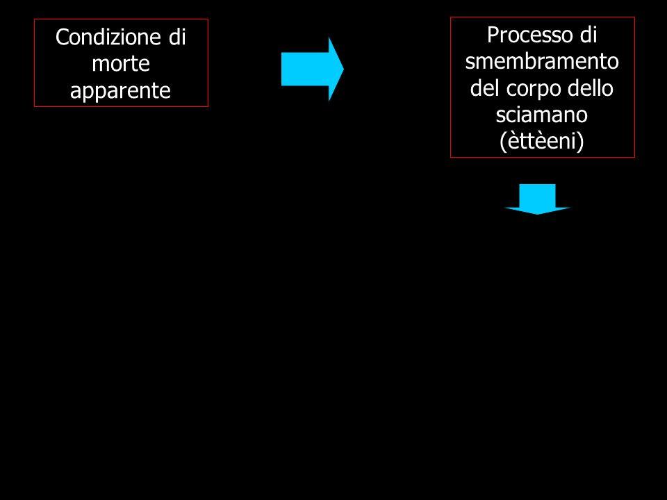 Condizione di morte apparente Processo di smembramento del corpo dello sciamano (èttèeni)