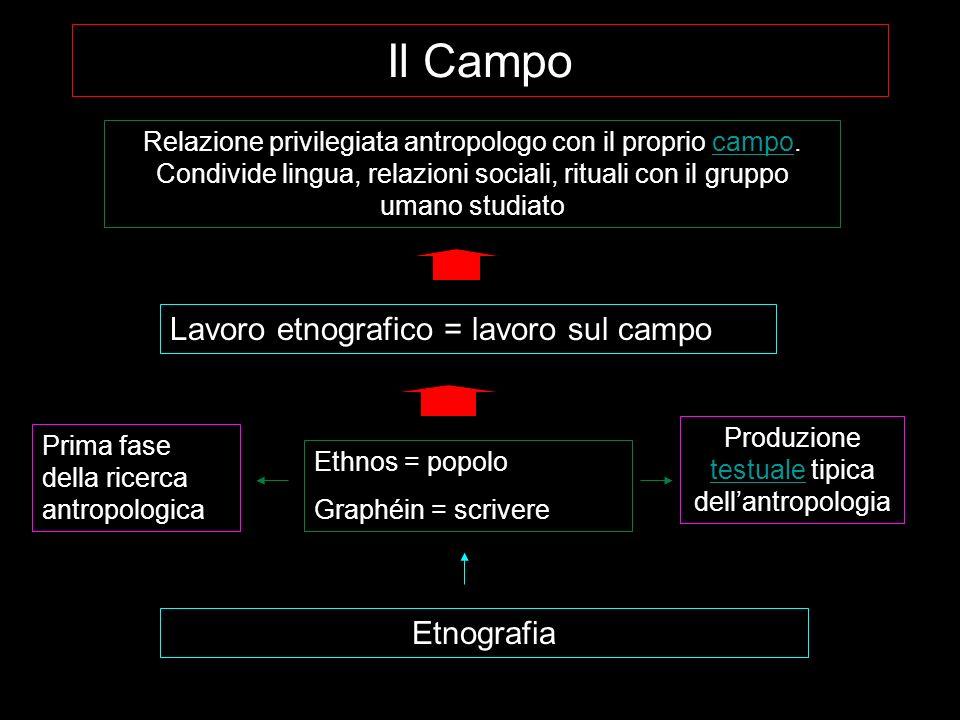 Etnografia (campo, raccolta dati) Sistematizzazione dati (etnologia) Testo etnografico (monografia etnografica- antropologia) Dal campo al testo