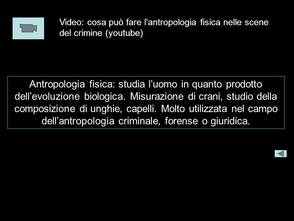 Video: cosa può fare lantropologia fisica nelle scene del crimine (youtube) Antropologia fisica: studia luomo in quanto prodotto dellevoluzione biolog