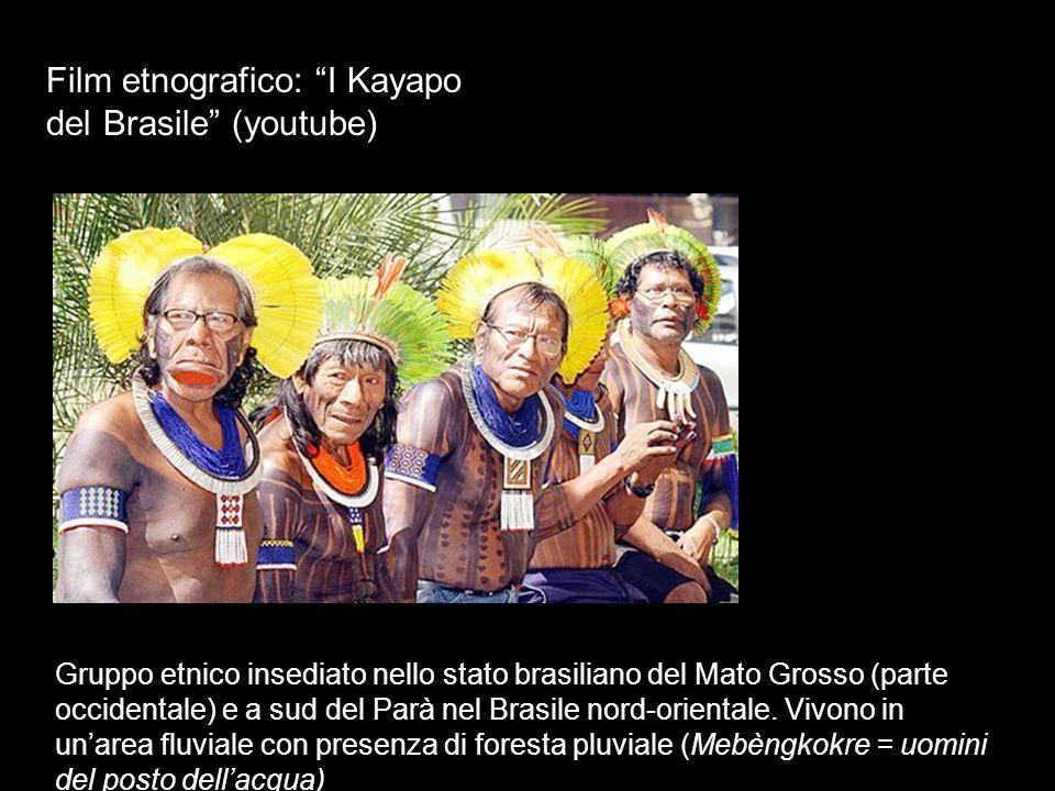 Film etnografico: I Kayapo del Brasile (youtube) Gruppo etnico insediato nello stato brasiliano del Mato Grosso (parte occidentale) e a sud del Parà n