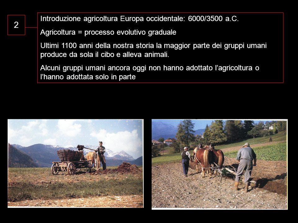 2 Introduzione agricoltura Europa occidentale: 6000/3500 a.C. Agricoltura = processo evolutivo graduale Ultimi 1100 anni della nostra storia la maggio