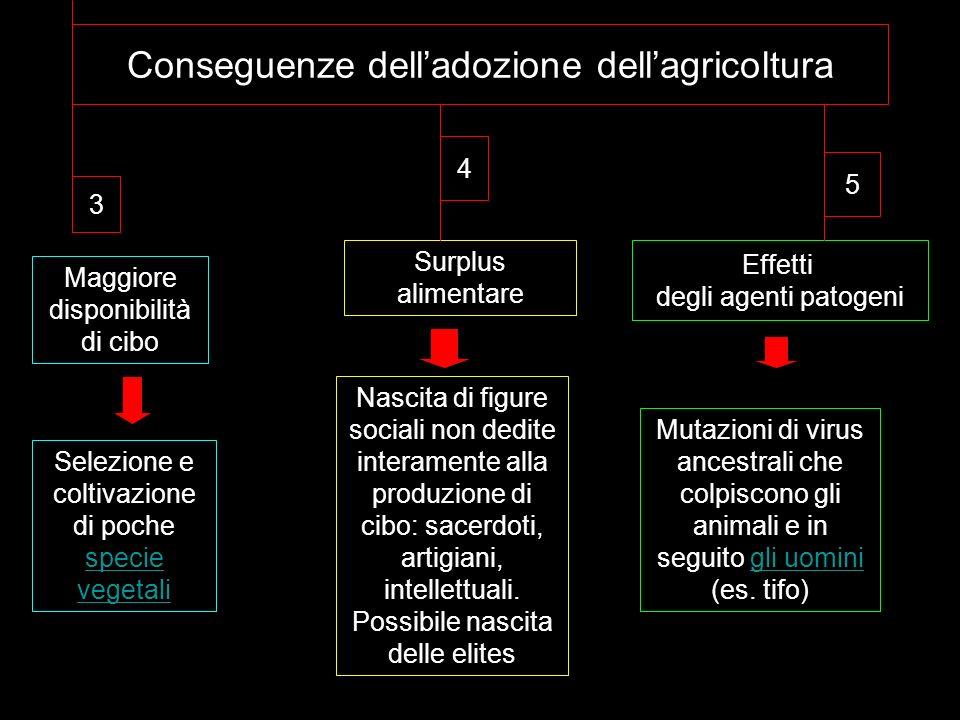 Conseguenze delladozione dellagricoltura 3 4 5 Surplus alimentare Nascita di figure sociali non dedite interamente alla produzione di cibo: sacerdoti,