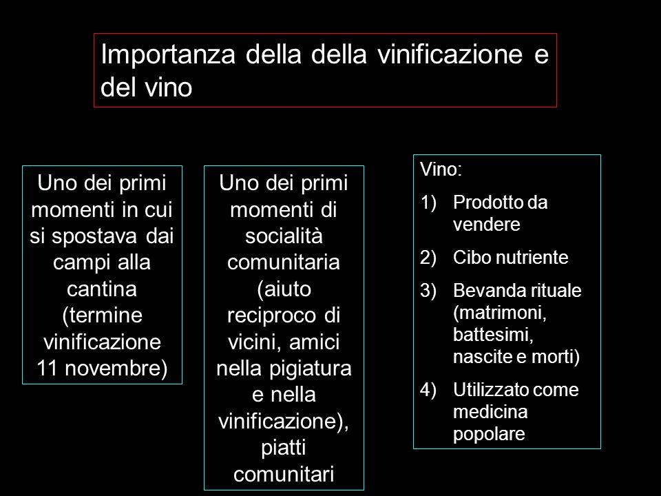 Importanza della della vinificazione e del vino Uno dei primi momenti in cui si spostava dai campi alla cantina (termine vinificazione 11 novembre) Un