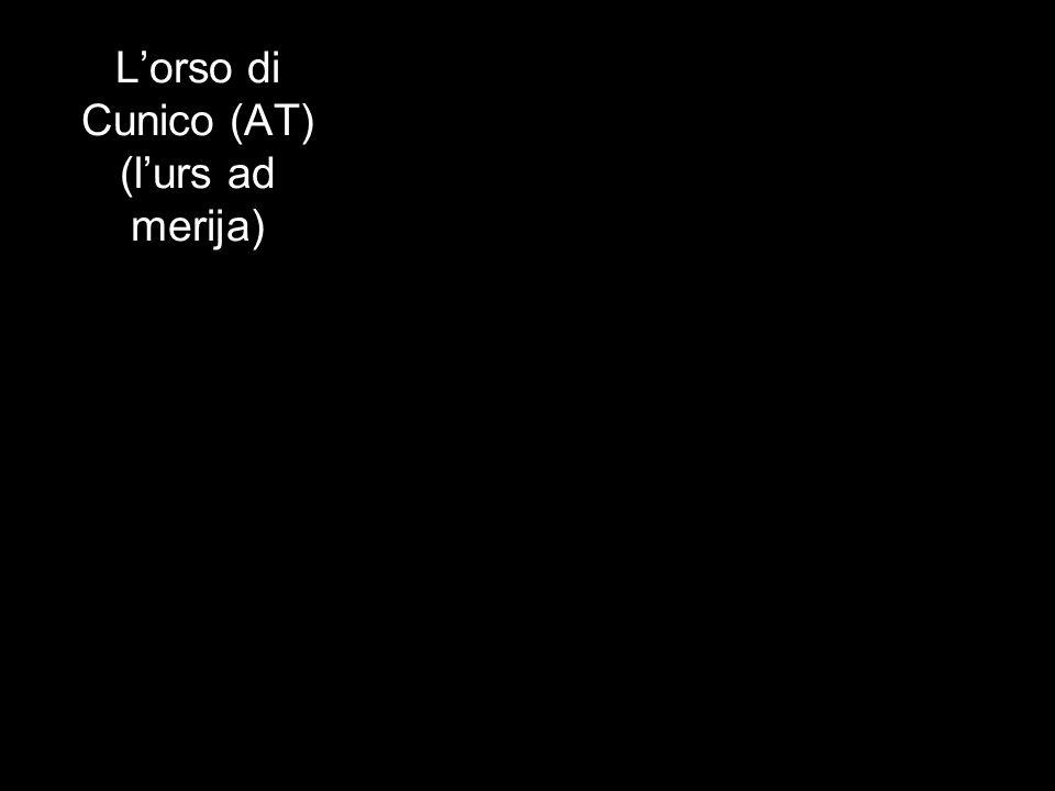 Lorso di Cunico (AT) (lurs ad merija)