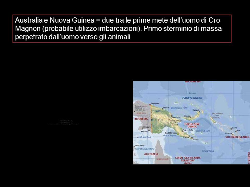 Australia e Nuova Guinea = due tra le prime mete delluomo di Cro Magnon (probabile utilizzo imbarcazioni). Primo sterminio di massa perpetrato dalluom