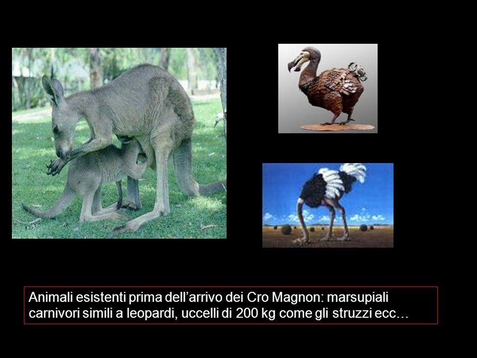 Animali esistenti prima dellarrivo dei Cro Magnon: marsupiali carnivori simili a leopardi, uccelli di 200 kg come gli struzzi ecc…