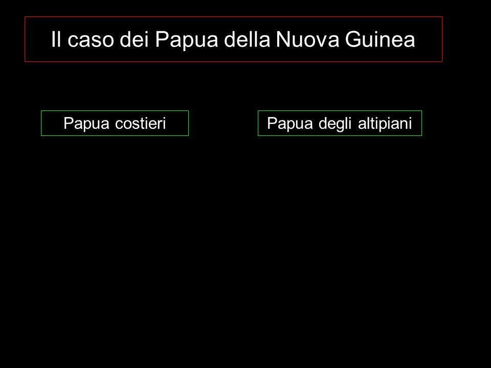 Il caso dei Papua della Nuova Guinea Papua costieriPapua degli altipiani