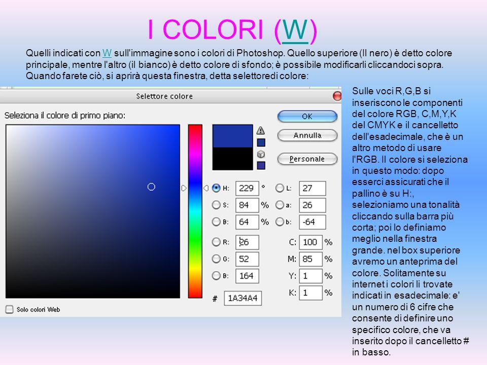 I COLORI (W)W Quelli indicati con W sull'immagine sono i colori di Photoshop. Quello superiore (Il nero) è detto colore principale, mentre l'altro (il