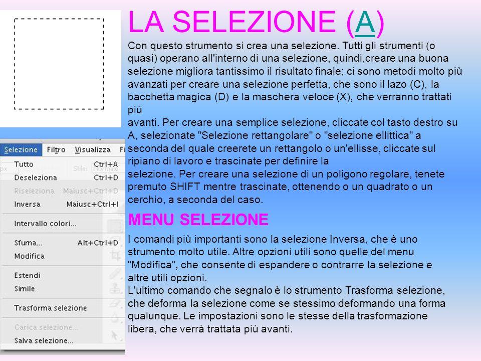 LA SELEZIONE (A)A Con questo strumento si crea una selezione. Tutti gli strumenti (o quasi) operano all'interno di una selezione, quindi,creare una bu