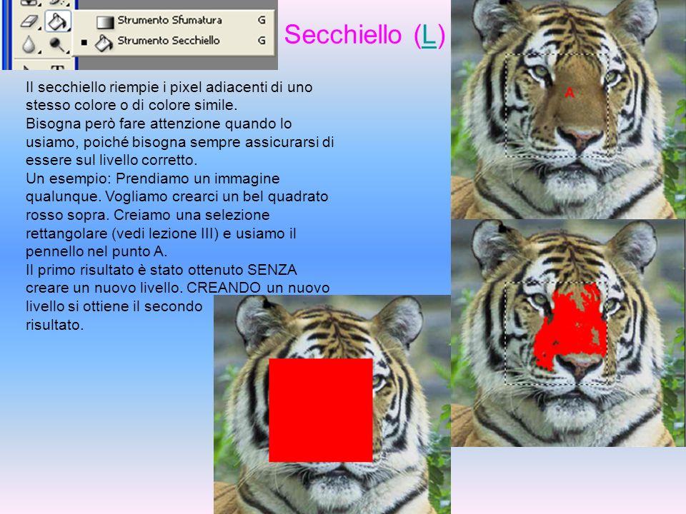 Secchiello (L)L Il secchiello riempie i pixel adiacenti di uno stesso colore o di colore simile. Bisogna però fare attenzione quando lo usiamo, poiché