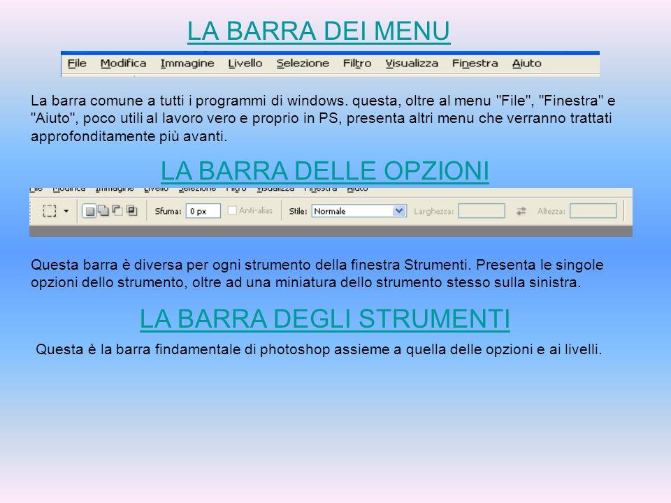 LA BARRA DEI MENU La barra comune a tutti i programmi di windows. questa, oltre al menu