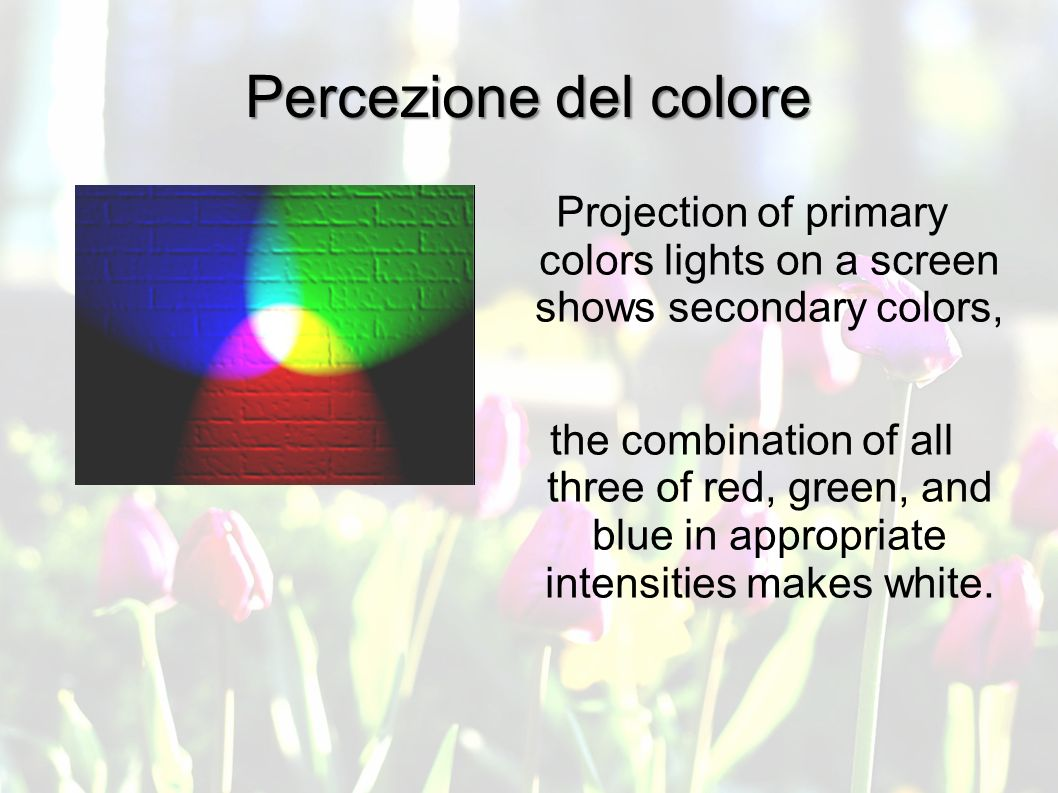 Percezione del colore Projection of primary colors lights on a screen shows secondary colors, the combination of all three of red, green, and blue in appropriate intensities makes white.