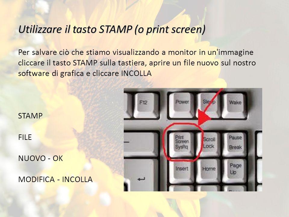 Utilizzare il tasto STAMP (o print screen) Per salvare ciò che stiamo visualizzando a monitor in un immagine cliccare il tasto STAMP sulla tastiera, aprire un file nuovo sul nostro software di grafica e cliccare INCOLLA STAMP FILE NUOVO - OK MODIFICA - INCOLLA