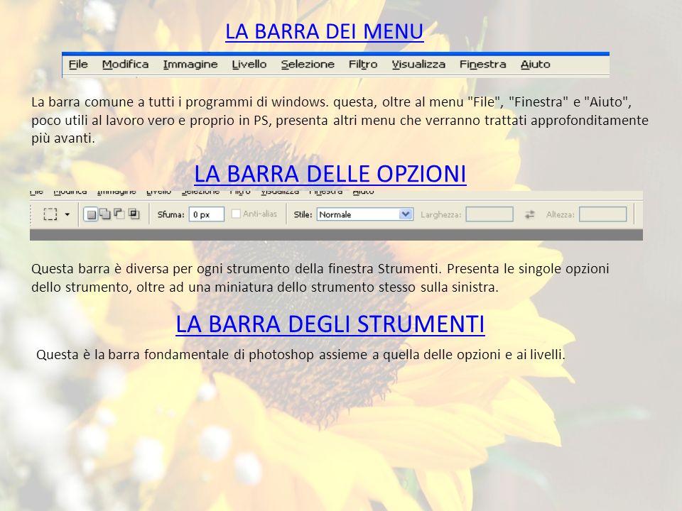 LA BARRA DEI MENU La barra comune a tutti i programmi di windows.