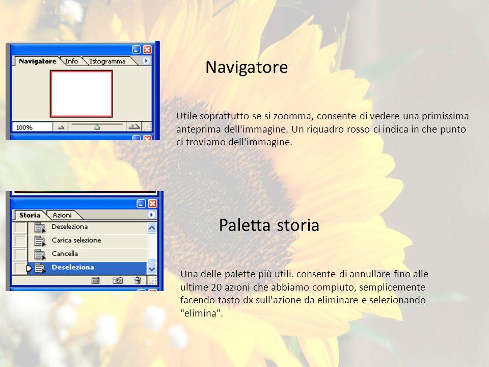 Navigatore Utile soprattutto se si zoomma, consente di vedere una primissima anteprima dell immagine.