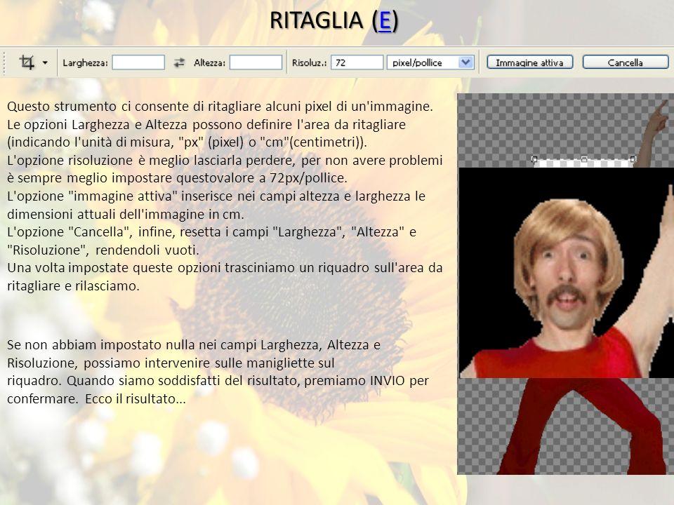 RITAGLIA (E) E Questo strumento ci consente di ritagliare alcuni pixel di un immagine.