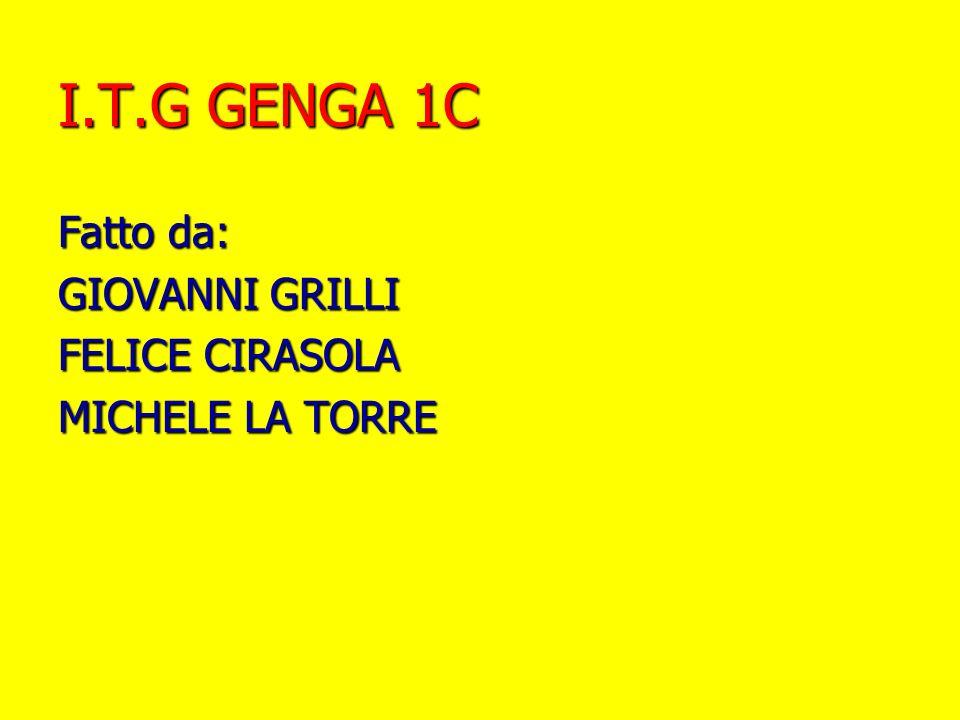 I.T.G GENGA 1C Fatto da: GIOVANNI GRILLI FELICE CIRASOLA MICHELE LA TORRE