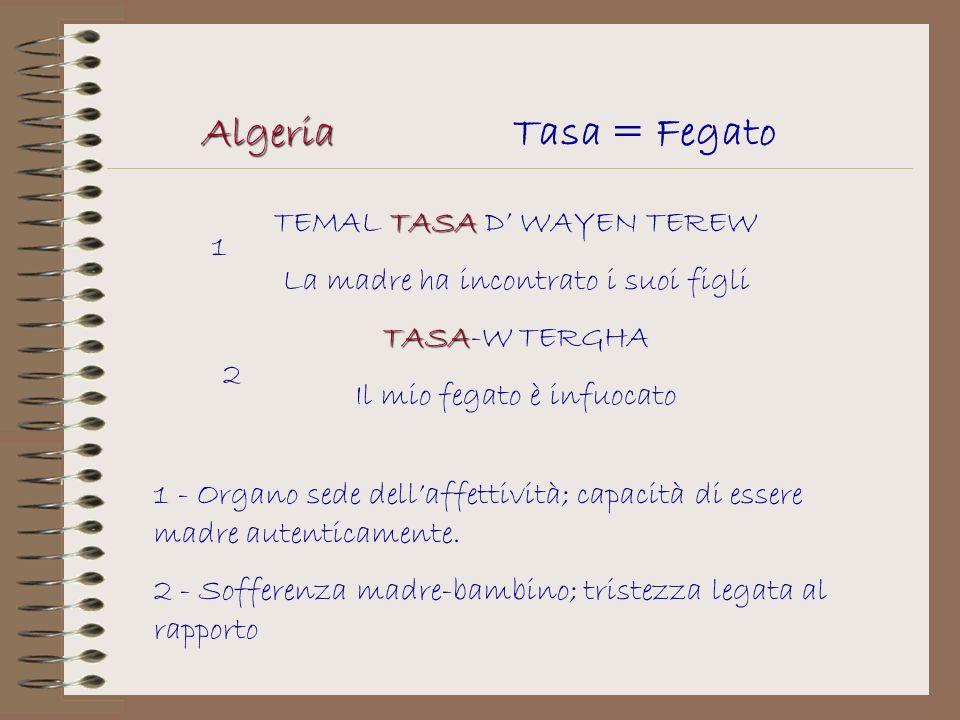 AlgeriaTasa = Fegato TASA TEMAL TASA D WAYEN TEREW La madre ha incontrato i suoi figli TASA TASA-W TERGHA Il mio fegato è infuocato 1 2 1 - Organo sed