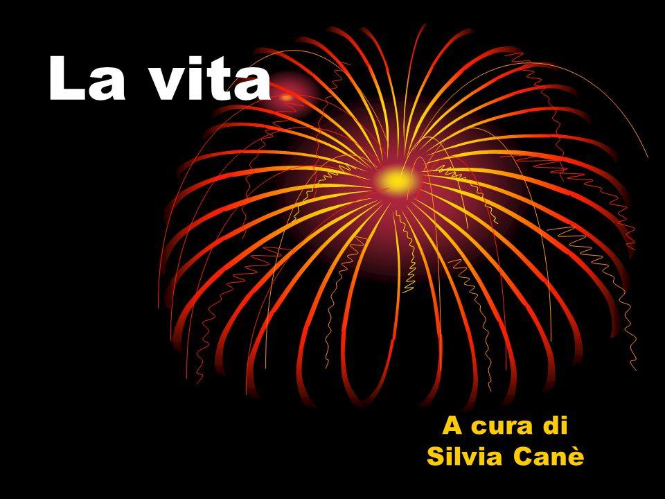 La vita A cura di Silvia Canè