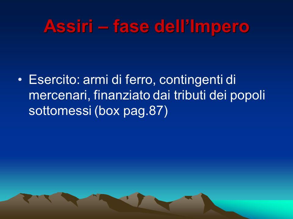 Assiri – fase dellImpero Esercito: armi di ferro, contingenti di mercenari, finanziato dai tributi dei popoli sottomessi (box pag.87)