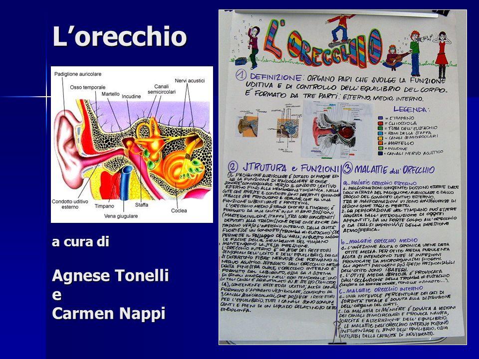 Lorecchio a cura di Agnese Tonelli e Carmen Nappi
