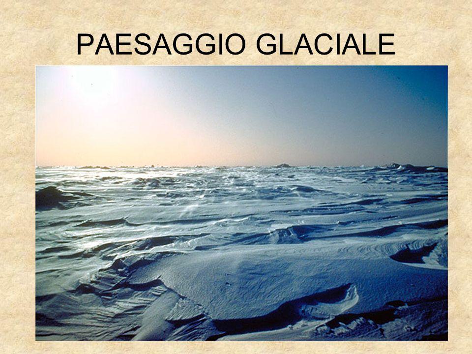 PAESAGGIO GLACIALE