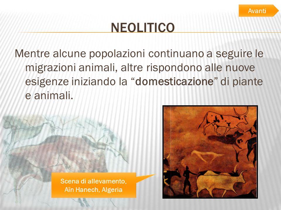 NEOLITICO Mentre alcune popolazioni continuano a seguire le migrazioni animali, altre rispondono alle nuove esigenze iniziando la domesticazione di pi