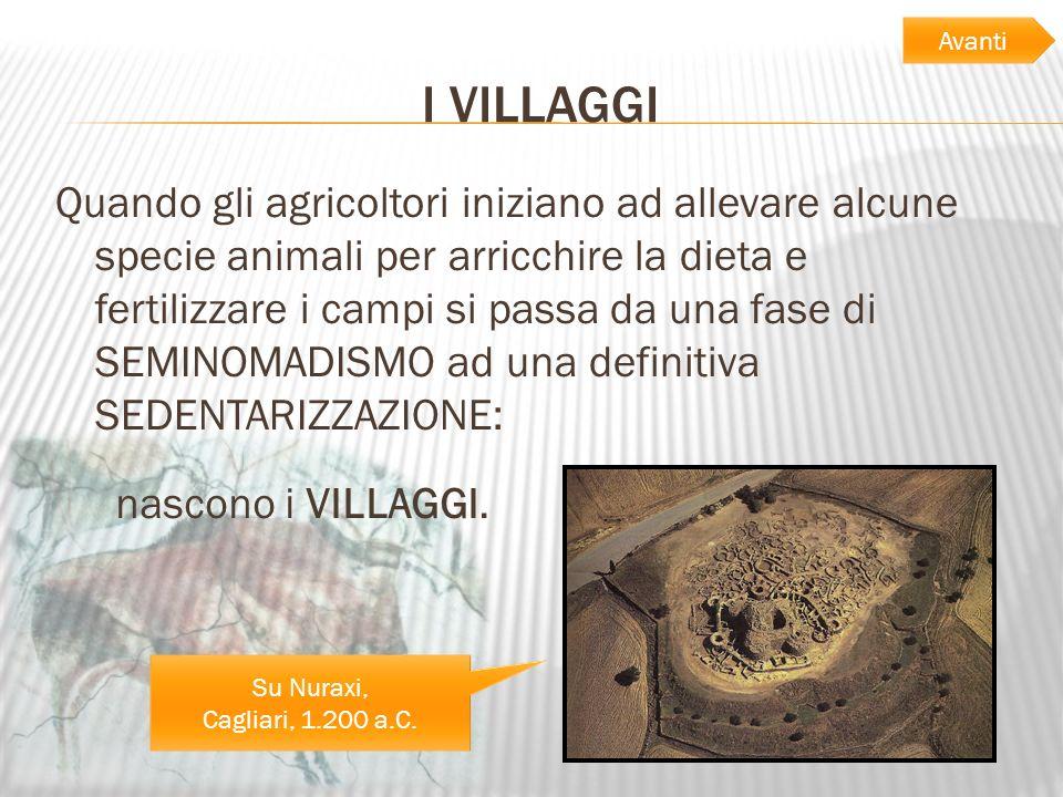 I VILLAGGI Quando gli agricoltori iniziano ad allevare alcune specie animali per arricchire la dieta e fertilizzare i campi si passa da una fase di SE