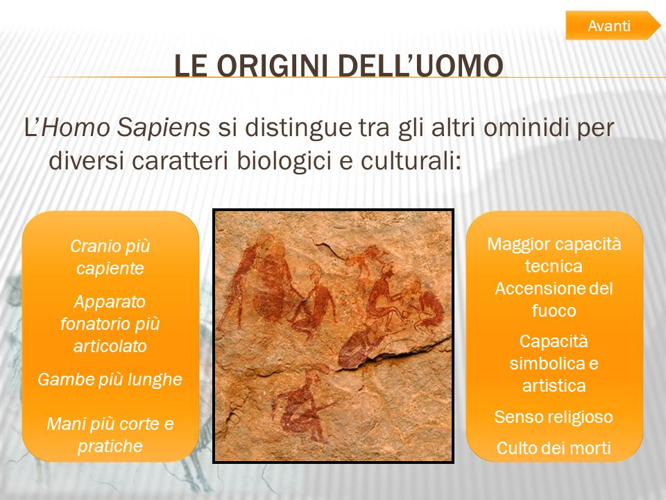 LE ORIGINI DELLUOMO LHomo Sapiens si distingue tra gli altri ominidi per diversi caratteri biologici e culturali: Cranio più capiente Apparato fonator