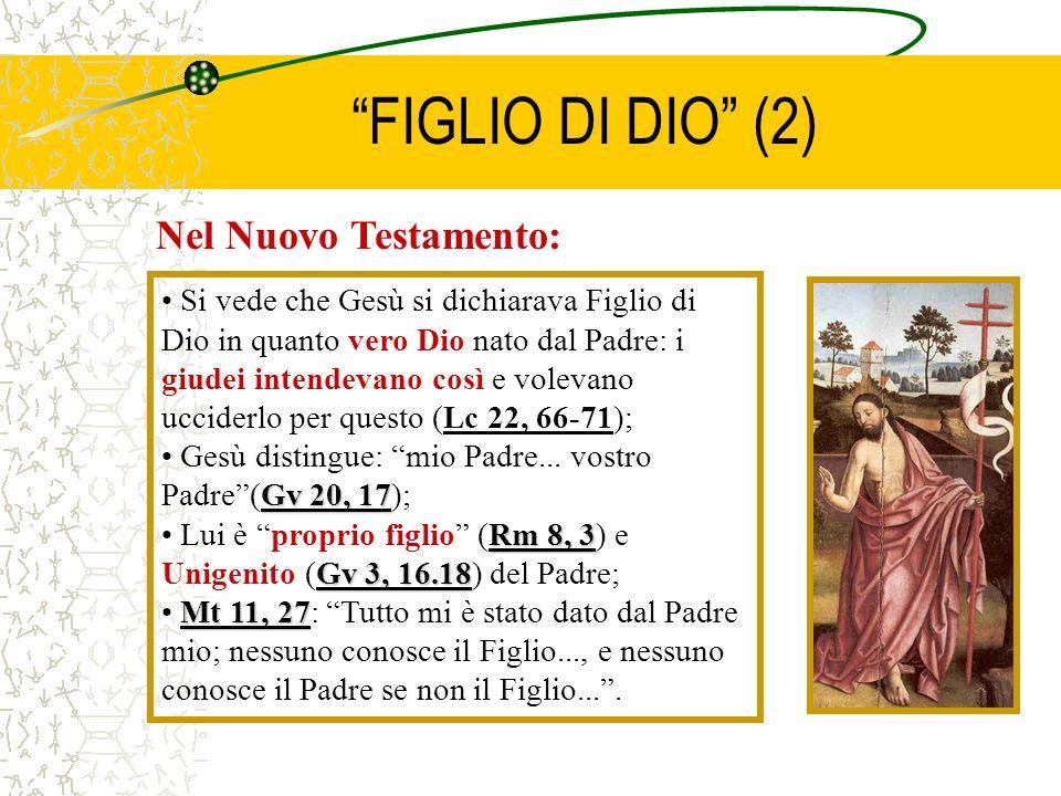 FIGLIO DI DIO (2) Nel Nuovo Testamento: Si vede che Gesù si dichiarava Figlio di Dio in quanto vero Dio nato dal Padre: i giudei intendevano così e vo