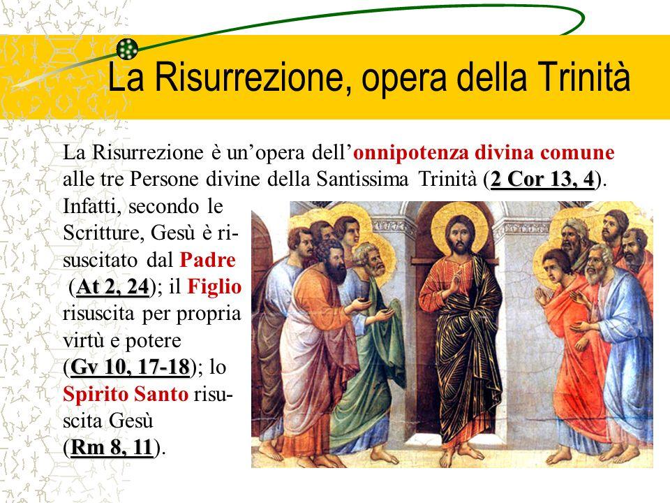 2 Cor 13, 4 La Risurrezione è unopera dellonnipotenza divina comune alle tre Persone divine della Santissima Trinità (2 Cor 13, 4).