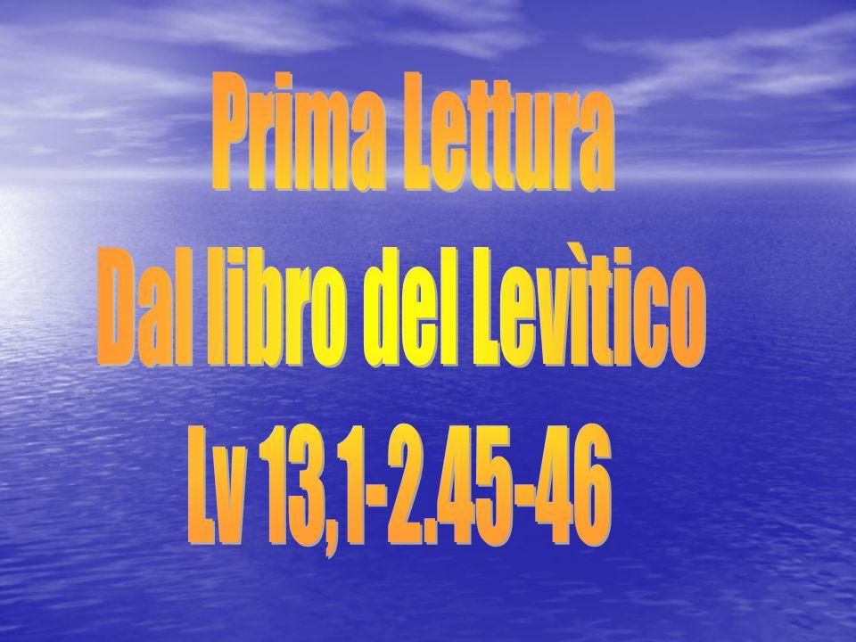 Lc 7,16 Alleluia, alleluia.Un grande profeta è sorto tra noi, e Dio ha visitato il suo popolo.