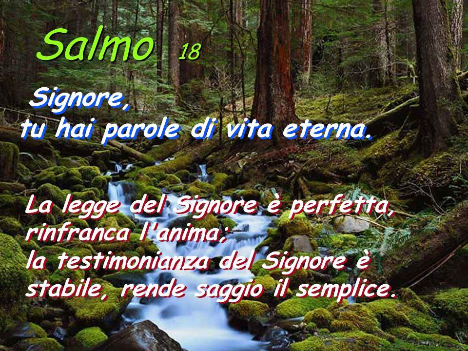 Salmo 18 Signore, tu hai parole di vita eterna. Signore, tu hai parole di vita eterna. La legge del Signore è perfetta, rinfranca l'anima; la testimon
