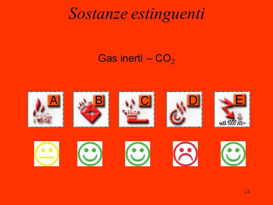 24 Gas inerti – CO 2 Sostanze estinguenti