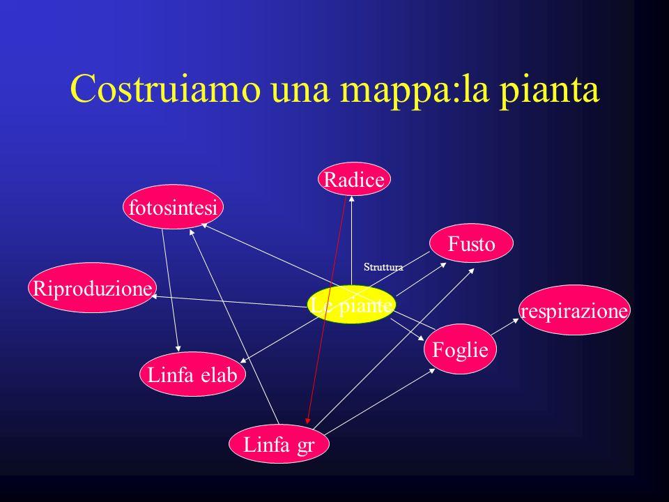 Costruiamo una mappa:la pianta Le piante Struttura Radice Fusto Foglie fotosintesi Linfa elab Linfa gr respirazione Riproduzione