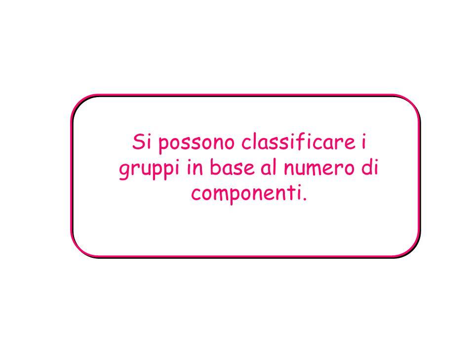 Si possono classificare i gruppi in base al numero di componenti.