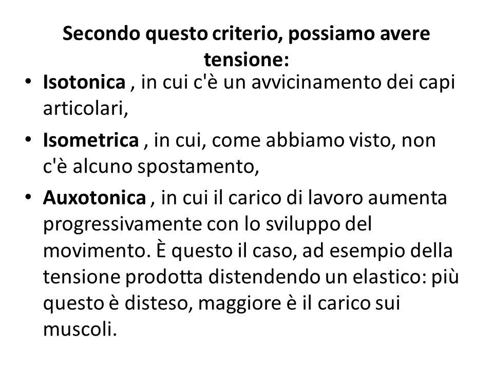 Secondo questo criterio, possiamo avere tensione: Isotonica, in cui c'è un avvicinamento dei capi articolari, Isometrica, in cui, come abbiamo visto,
