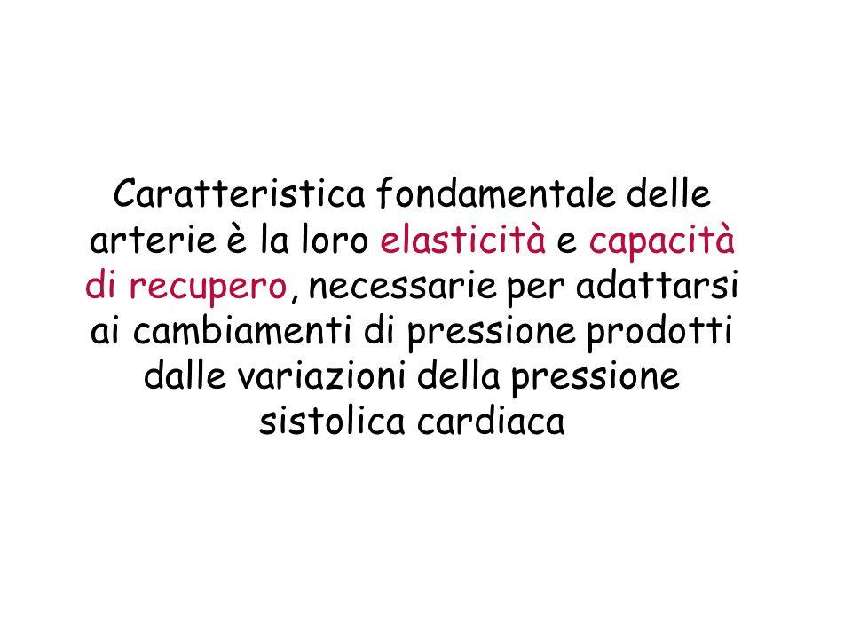 Caratteristica fondamentale delle arterie è la loro elasticità e capacità di recupero, necessarie per adattarsi ai cambiamenti di pressione prodotti d