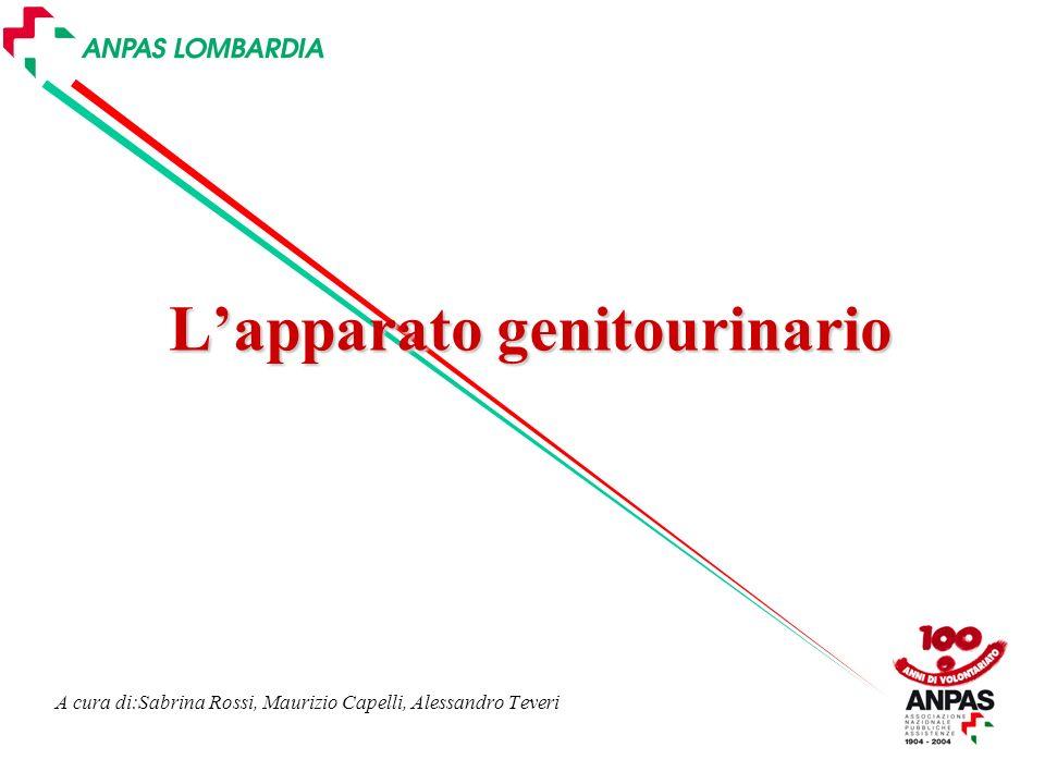 A cura di:Sabrina Rossi, Maurizio Capelli, Alessandro Teveri Lapparato genitourinario