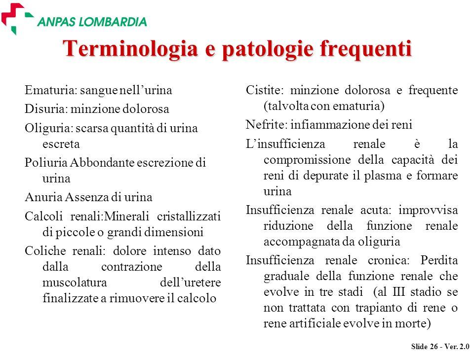 Slide 26 - Ver. 2.0 Terminologia e patologie frequenti Ematuria: sangue nellurina Disuria: minzione dolorosa Oliguria: scarsa quantità di urina escret