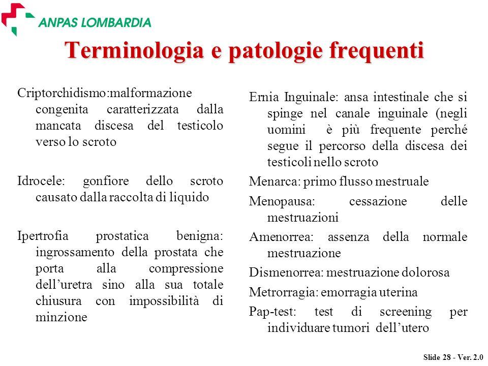 Slide 28 - Ver. 2.0 Terminologia e patologie frequenti Criptorchidismo:malformazione congenita caratterizzata dalla mancata discesa del testicolo vers