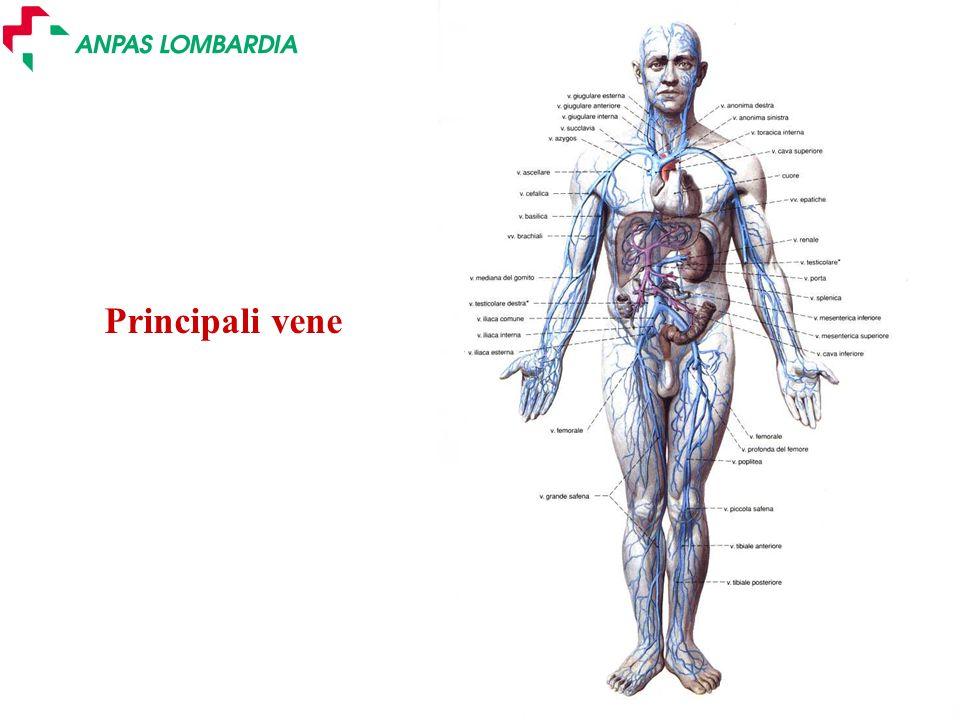 Slide 12 - Ver. 2.0 Principali arterie a