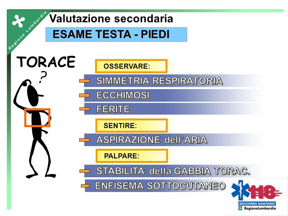 TORACE ESAME TESTA - PIEDI Valutazione secondaria OSSERVARE:SENTIRE:PALPARE: