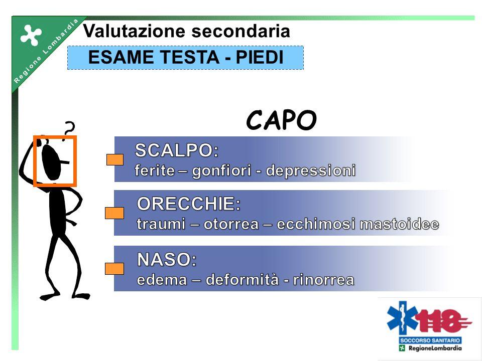 CAPO ESAME TESTA - PIEDI Valutazione secondaria