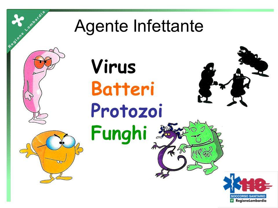 Agente Infettante Virus Batteri Protozoi Funghi