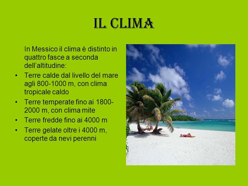 Il clima In Messico il clima è distinto in quattro fasce a seconda dellaltitudine: Terre calde dal livello del mare agli 800-1000 m, con clima tropica