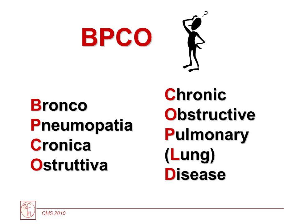 CMS 2010 Bronco Pneumopatia Cronica Ostruttiva Chronic Obstructive Pulmonary (Lung) Disease Chronic Obstructive Pulmonary (Lung) Disease BPCO