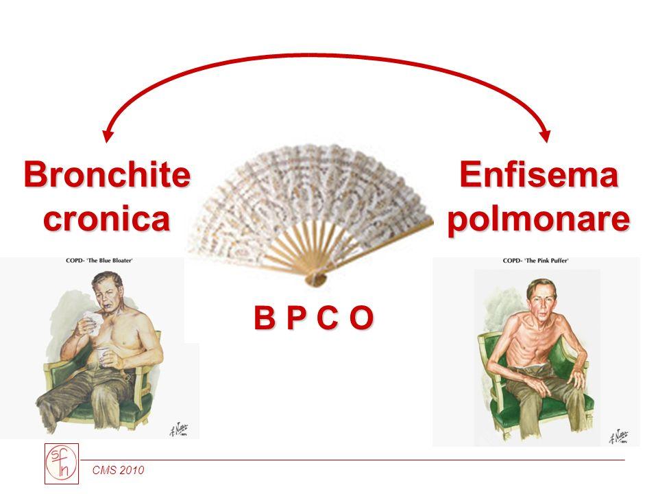Enfisema polmonare B P C O Bronchite cronica