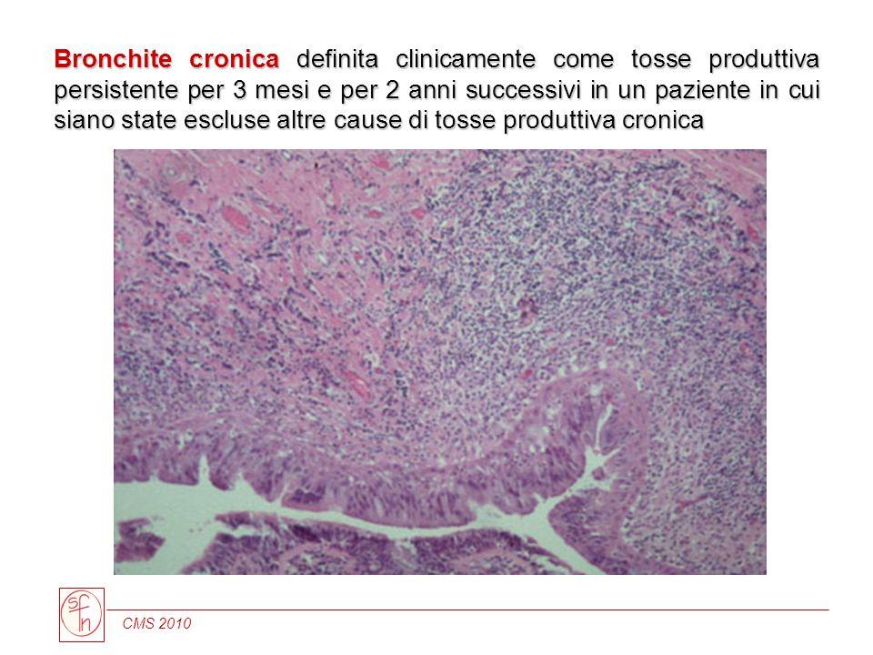 CMS 2010 Bronchite cronica definita clinicamente come tosse produttiva persistente per 3 mesi e per 2 anni successivi in un paziente in cui siano stat