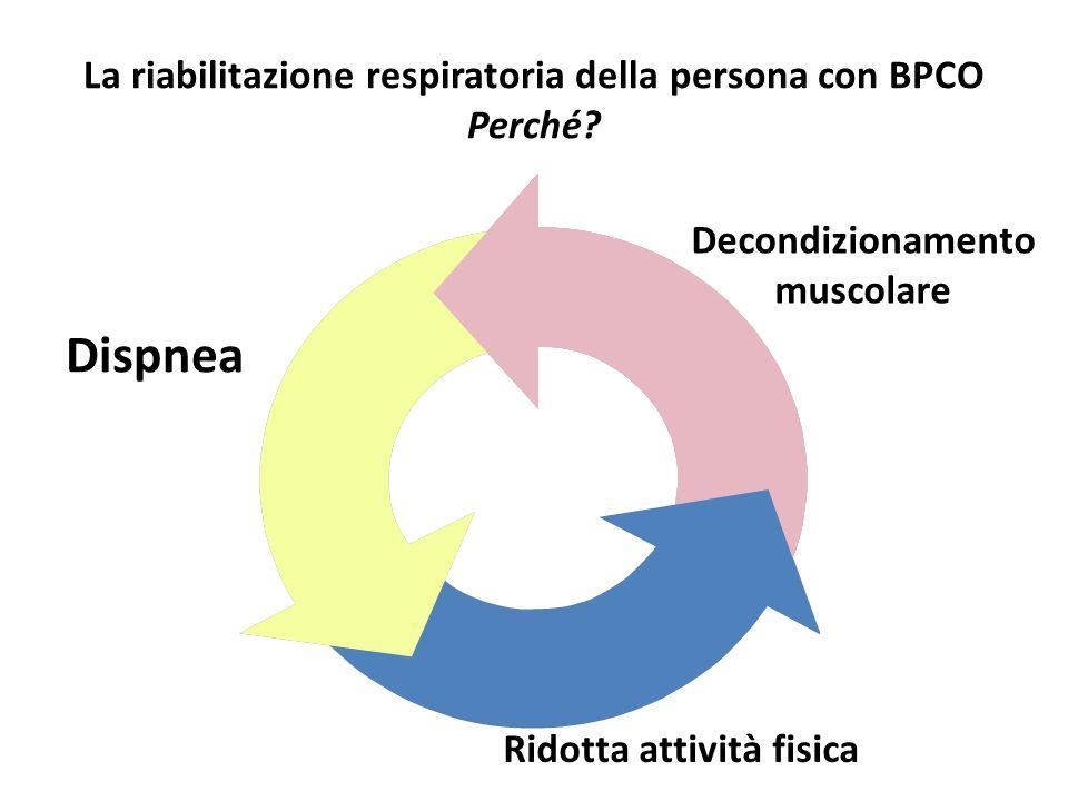 Malattia respiratoria cronica Dispnea Personalità Limitazioni attività fisica Situazione ambientale Decondizionamento Disabilità Rapporti tra malattia respiratoria e QoL